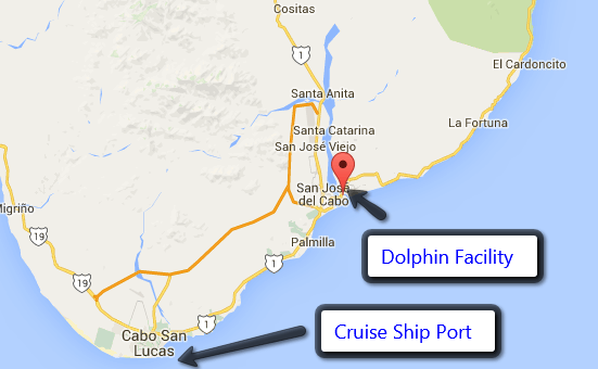 Cruise Ship Port and Cabos San Jose Dolphin Facility Map