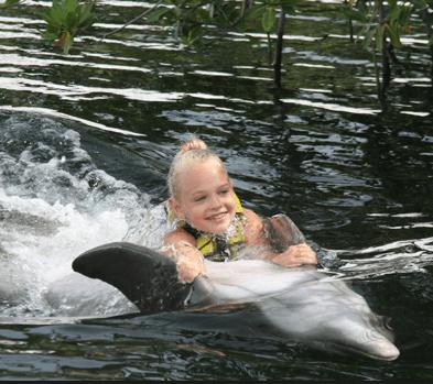 My Swim with Dolphins in Islamorada Keys