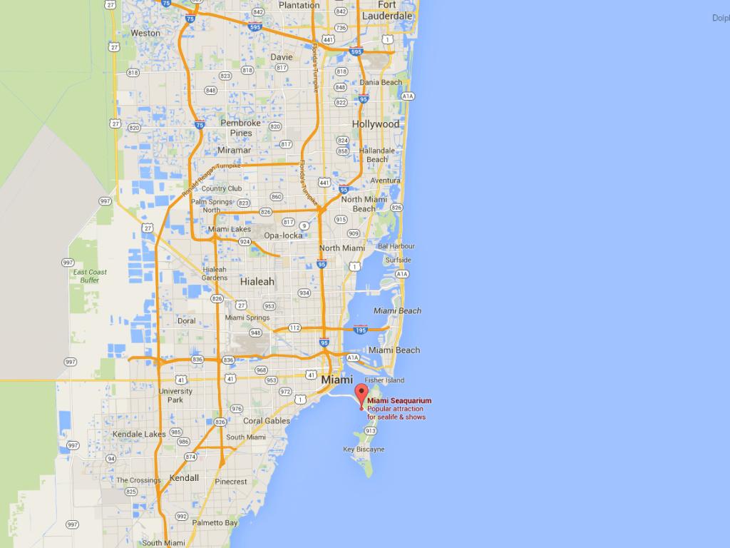 Key Biscayne Miami Dolphin Location