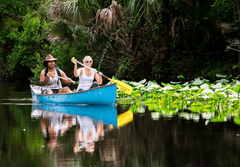 Wekiva_River_paddling