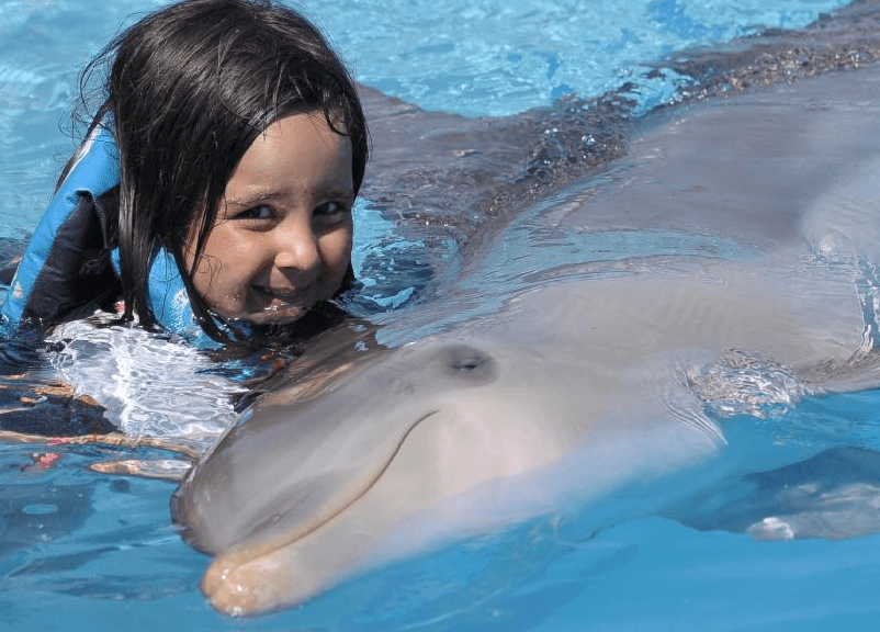 dolphin_encounter_punta_cana