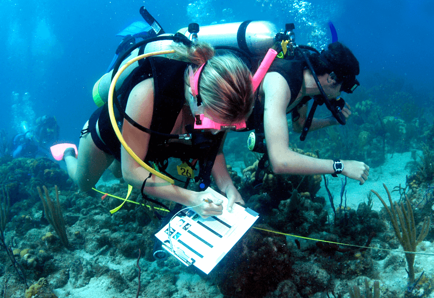 A Fun and Exciting Career - Marine Science