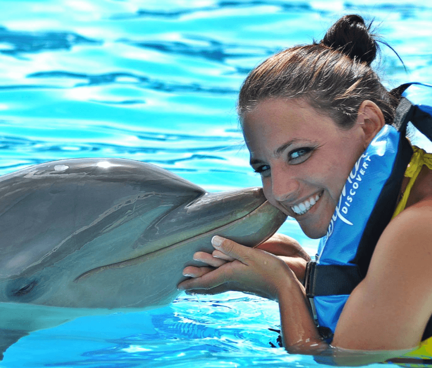 One on One with the Dolphin in Anguilla