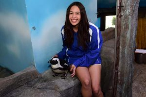 Penguin Meet and Greet in Miami