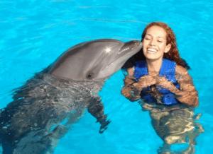 dolphin swim adventure kiss oahu hawaii