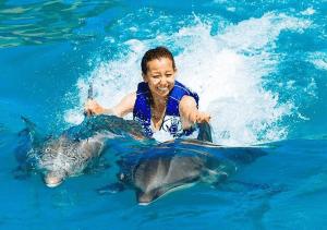 Dolphin Royal Swim Dorsal Fin Ride Oahu Hawaii