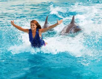 Royal Swim foot push Oahu Hawaii