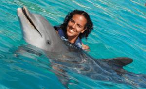 dolphin swim adventure holding oahu hawaii