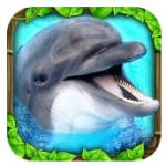 dolphin app