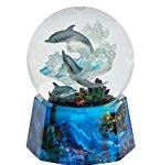 dolphin globe music