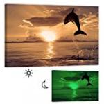Glow in Dark dolphin