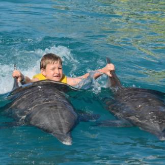 Puerto Plata Dolphin Royal Swim