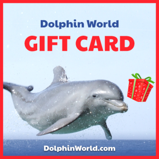 Dolphin World Gift Card