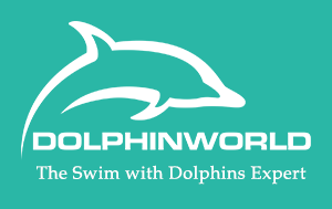 Swimming with Dolphins 1-800-667-5524