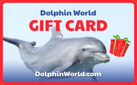 Dolphin World Gift Card